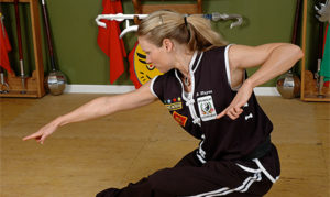 elizabeth-wilcock-martial-arts